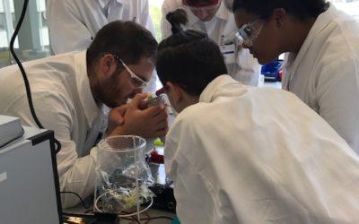 Forschen wie die Profis – BASF Teens' Lab Biotech