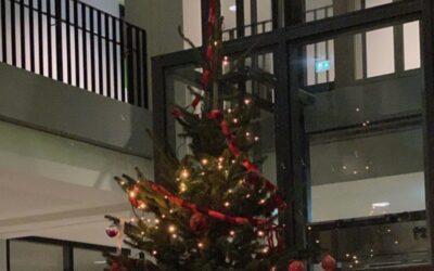 Weihnachtsbaum schmückt Foyer unserer Schule